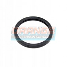 Кольцо термостата BRP 420650300