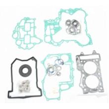 Комплект прокладок и сальников двигателя SPI для Ski Doo 600 ACE SM-09508F